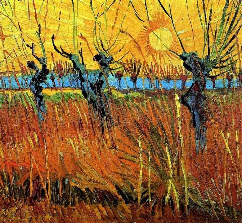 Willows at Sunset   Vincent Van Gogh